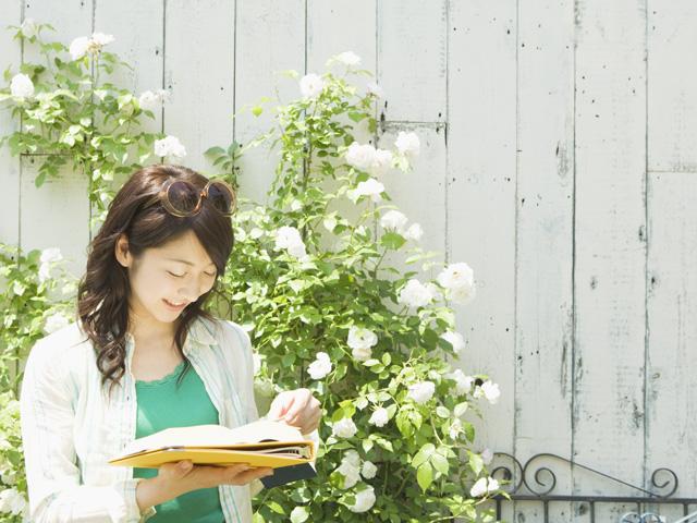 かんたんメールフォームGreenForm 祝!2周年キャンペーン